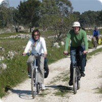 Guided bike tour across Salento