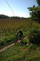 Cycling in Franciacorta