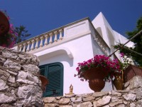 Villa Rizzo